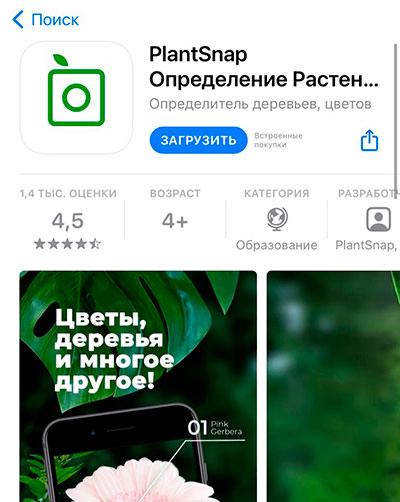 PlantSnap приложение